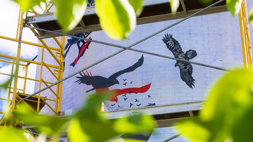 univers d'oiseaux, la volière de mont-tremblant – rené derouin – 2016 - making of